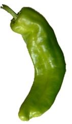 italian pepper